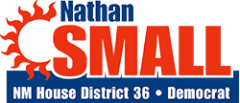 Nathan Small for State House